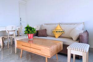 天铂公寓50平 现代——竣工阶段